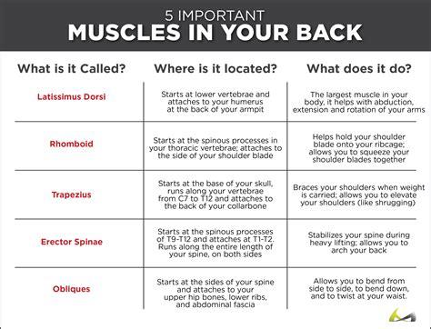 bad back big muscles t nation