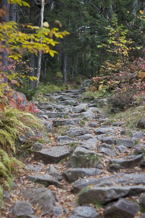 rocks trees hiking trail pulpit rock church  colorado