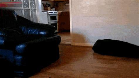 carlton sliding across floor gif floor gif find on giphy