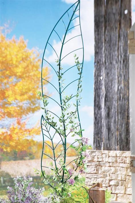Shaped Garden Trellis These Metal Garden Trellises Are Beautiful With Or Without