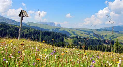 urlaub alm österreich seiser alm urlaub auf s 252 dtirols sch 246 nster alm