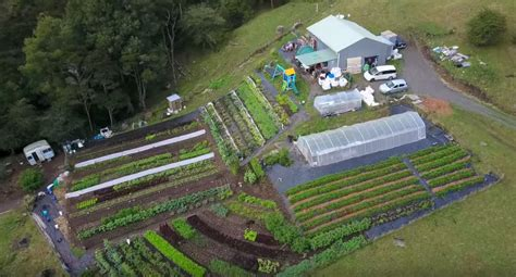 backyard urban farm company urban farmer curtis stone teaches profitable backyard farming