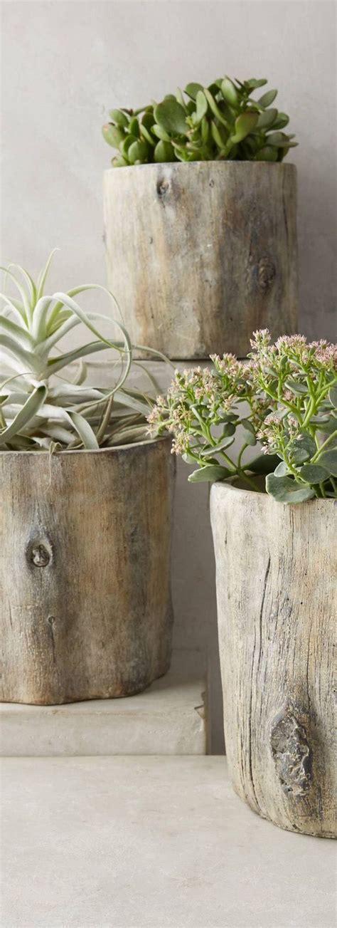 repurposing tree trunks or stumps green eco services 1351 best images about plant pots boxes bottles vases