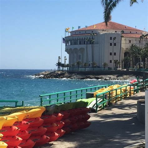 boat ride to catalina island take a one hour catalina express boat ride to avalon for a