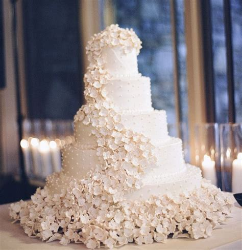 Beautiful Wedding Pictures by 25 Best Ideas About Beautiful Wedding Cakes On