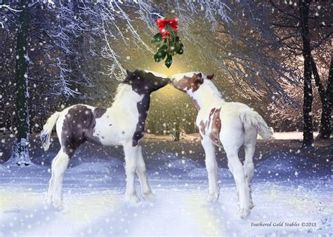 free printable christmas cards with horses gypsy foals and mistletoe photograph by feathered gold stables
