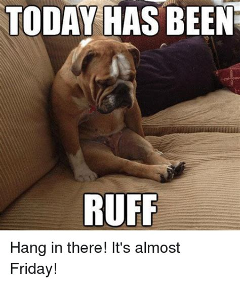 Hang In There Meme - 25 best memes about its almost friday its almost friday