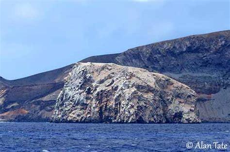boatswain bird island fr 233 gate aigle de mer
