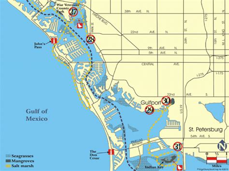 Clearwater Florida Records Pinellas County Florida Records Pdf