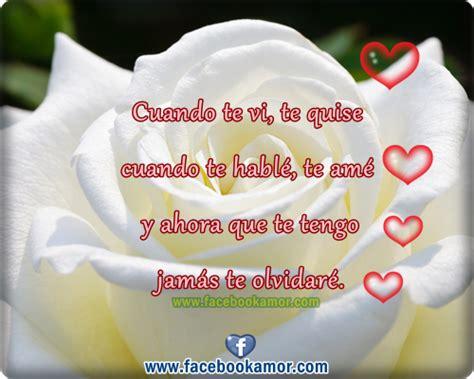 imagenes de rosas blancas para portada de facebook rosas blancas con frases bonitas imagui