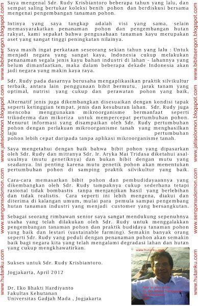 Jual Bibit Sengon Kultur Jaringan jual bibit jabon unggul kultur jaringan