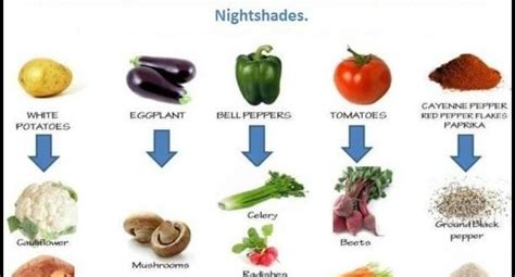 nightshade vegetables  arthritis  garden