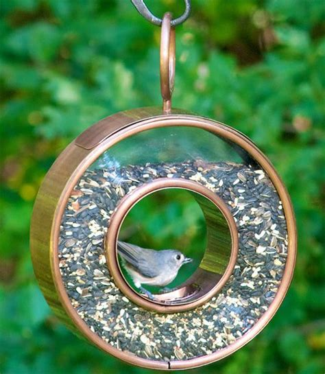 219 best best bird feeders you can buy online images on