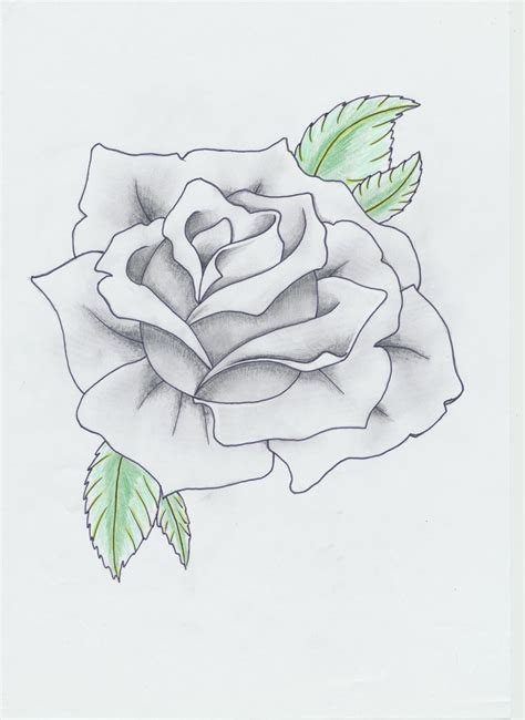 rose tattoo outline black and gray by helldemondavey on deviantart