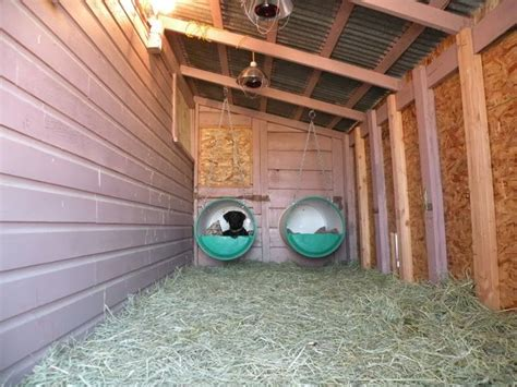 heat l for dog kennel bed hay heat ls and heated water omg dog houses