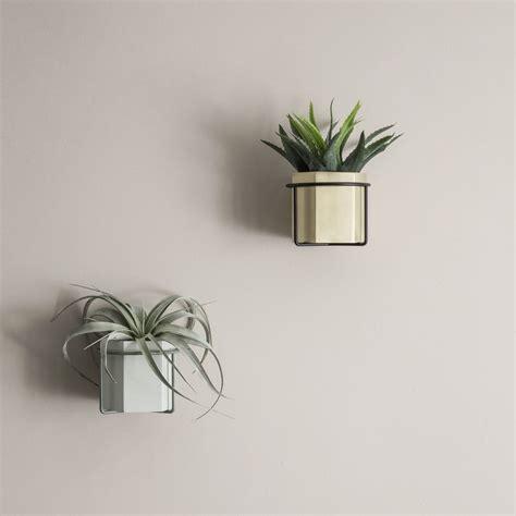 vasi da parete vasi da parete samenquran