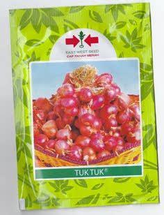 Jual Bibit Bawang Merah Malang bawang merah bibit unggul