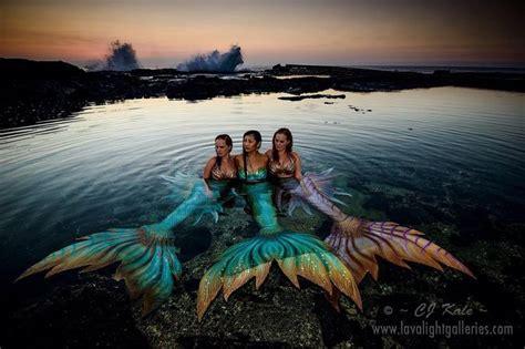 Hummingbird Mermaid Scuba 25 best ideas about real mermaid photos on