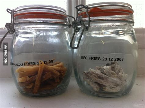 Mcdonalds Meals That Thankfully Didnt Make It by Mcdonald S Fries Vs Kfc Fries After 3 Years 9gag