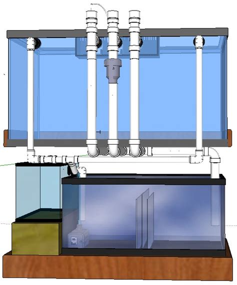 Plumbing A Sump by Separate Refugium And Sump Saltwaterfish Forum