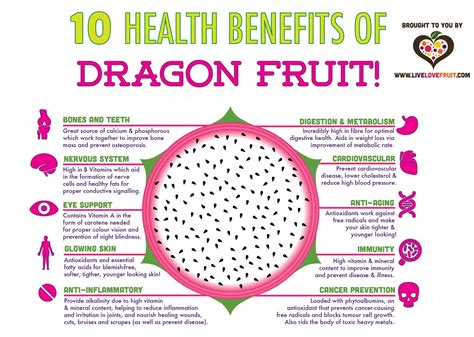 fruit u can eat in one bite 10 amazing health benefits of fruit