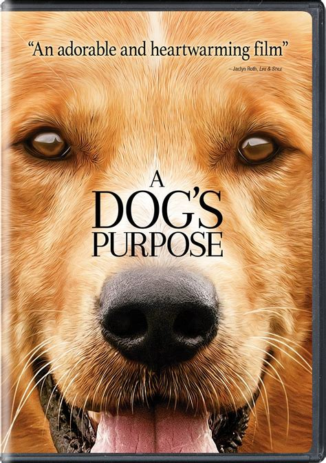 a s purpose dvd northeast regional library