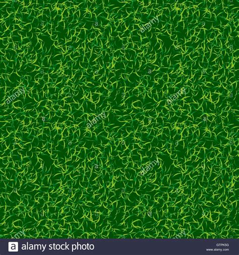 grass green color green color grass vector background fresh lawn