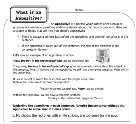 Appositive Worksheets by What Is Appositives Grammar What Is