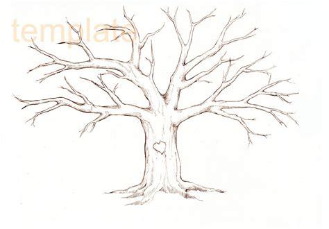 lady proteus  trees