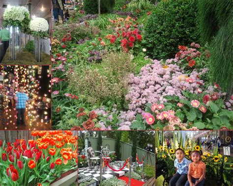 Expo Gardens by Melbourne International Flower Garden Show 2016 Melbourne