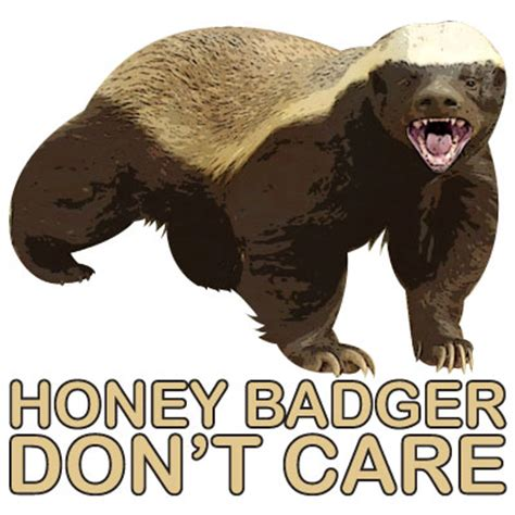 Badger Memes - honey badger don t care honey badger know your meme