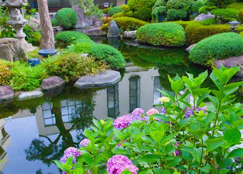 backyard water garden make your water gardens with trendy pond designs