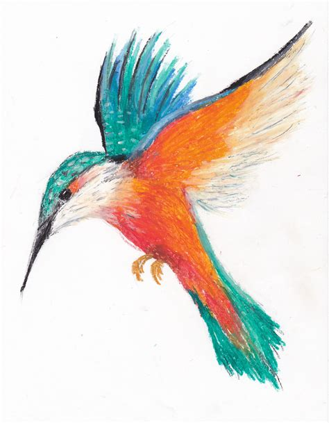 Drawing W Pastels pastel bird by riesirules on deviantart