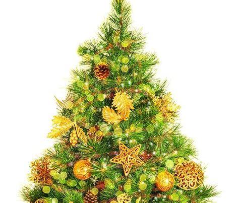 christmas tree scarborough maine photo album christmas