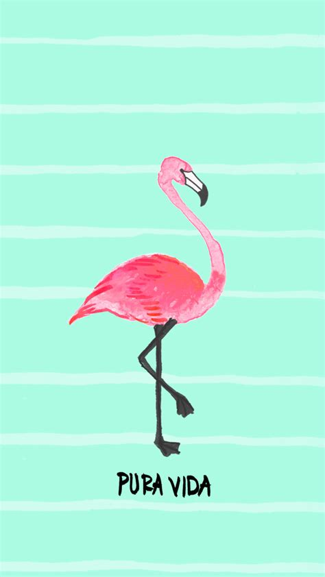 flamingo wallpaper for iphone 6 the pura vida bracelets blog downloads