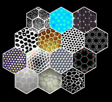 hexagon pattern in nature hexagons in a close packed world hexagons forever