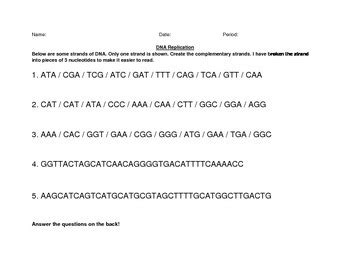 dna replication practice worksheet answers dna replication practice by happy cat science teachers pay teachers