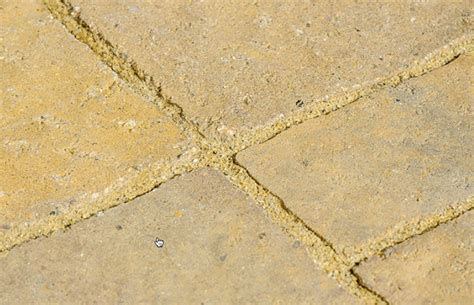 sand for patio pavers patio pavers and polymeric sand what are the pitfalls
