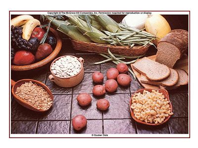 carbohydrates use in human maggie s farm compendium review nutrition