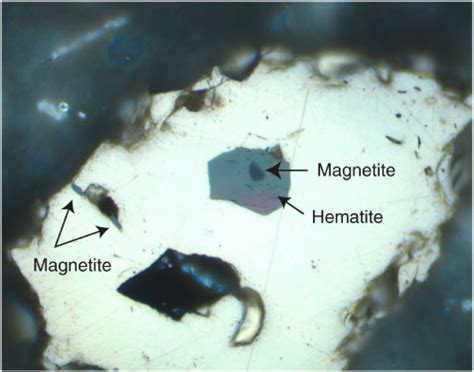 hematite in thin section figure f83 inclusion of hematite medium gray with a