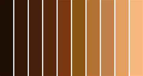 shades of brown shades of brown skin color dark brown hairs
