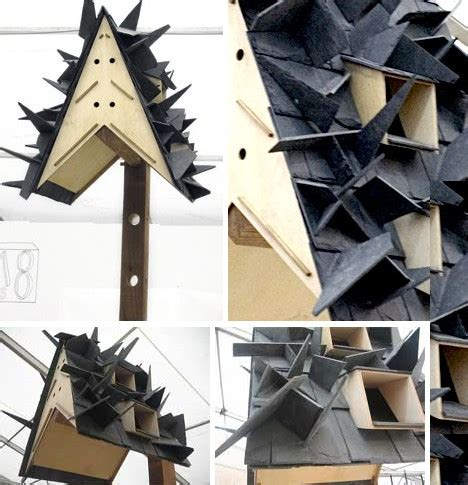 how to build a bat house housing on the wing 10 bitingly bizarre bat houses