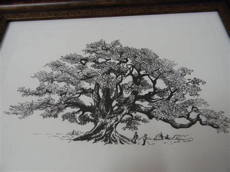 oak tree drawing oak tree by irregulardaisies on deviantart