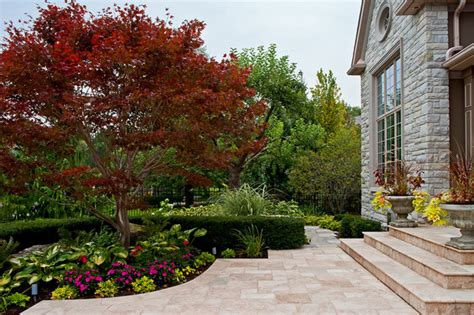 landscaping with maple trees pj landscape traditional landscape toronto by a sellar architectural photographer