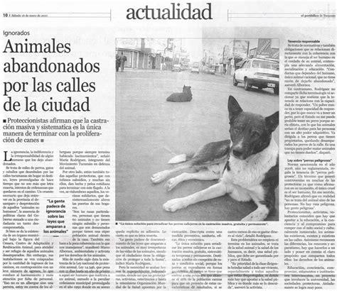 noticia de un secuestro 9580434271 el peri 243 dico de tucum 225 n ignorados animales abandonados por las calles de la ciudad los