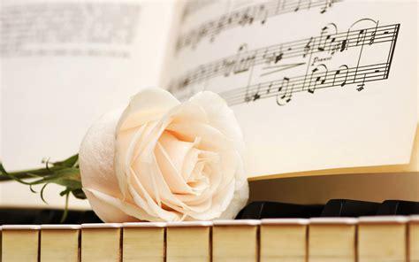 Notes keys rose white piano flowers wallpaper   1920x1200