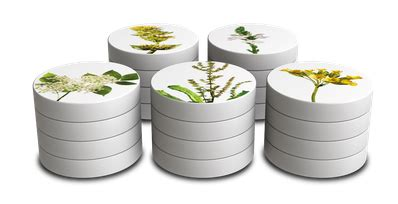 sinupret wann wirkt es hochkonzentrierte wirkkraft die bew 228 hrte 5 pflanzen