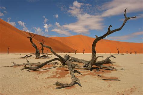Spacius by Namib Desert Dunes Sossusvlei Pans Sesriem