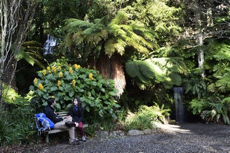 cheap amodation new plymouth nz 10 free or cheap things to do in new plymouth backpacker