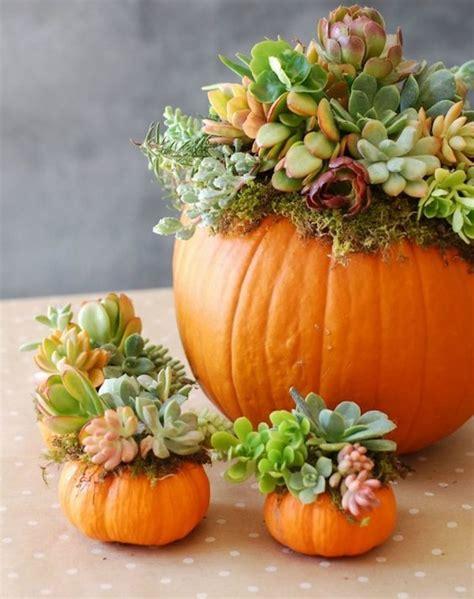 decoration pour une garden 35 id 233 es pour une d 233 coration d automne automne